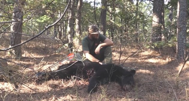 Black Bear Hunting With A Traditional Bow, On Foot, & On Public Land Isn't For the Faint Of Heart