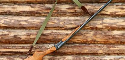 shotgun, weapons, logs