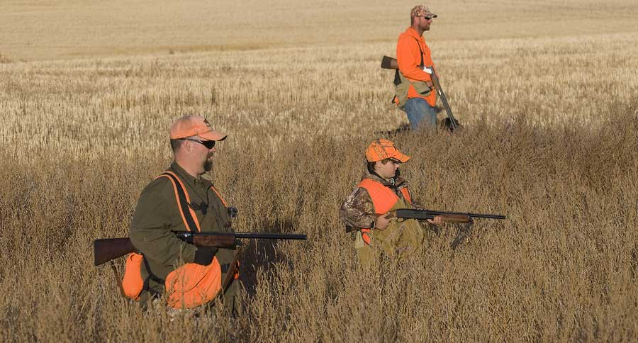 Hunting And Fishing License Money